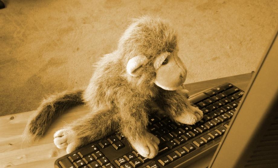 Just one monkey